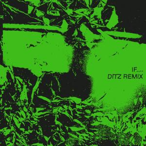 Album If.... (Ditz Remix) from Bdrmm