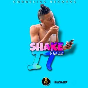 Album Shake It(Explicit) from Najee