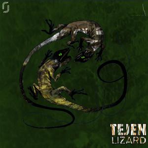 Album Lizard from Tejen