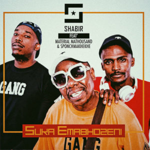 Album Suka Emabhozeni Single from DJ Shabir