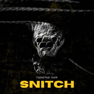 Faylad的專輯Snitch