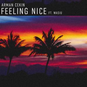 Album Feeling Nice (Explicit) from Arman Cekin