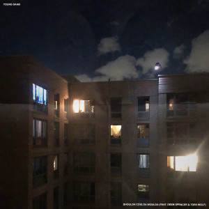 Album shoulda coulda woulda (feat. Deem Spencer & Torii Wolf) from Young Saab