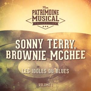 Brownie McGhee的專輯Les Idoles Du Blues: Sonny Terry Et Brownie McGhee, Vol. 1
