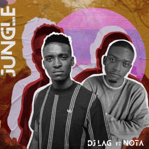 Album Jungle from DJ Lag