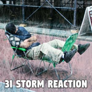 31 Storm Reaction