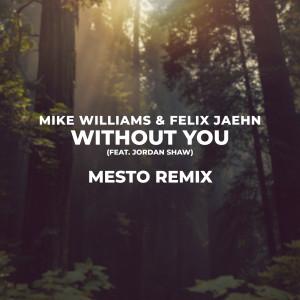 Album Without You (Mesto Remix) from Felix Jaehn