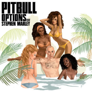 Listen to Options song with lyrics from Pitbull