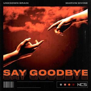 Dengarkan Say Goodbye lagu dari Unknown Brain dengan lirik