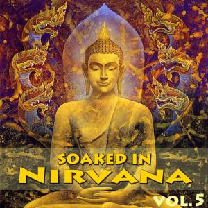 Soaked In Nirvana, Vol.5