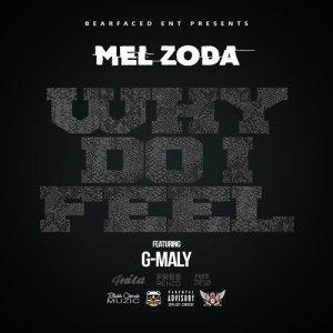 Album Why Do I Feel from Mel Zoda