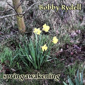Album Spring Awakening from Bobby Rydell