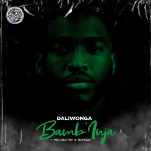 Album Bamb'Inja from DaliWonga