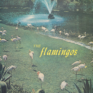 Album Flamingos from The Flamingos