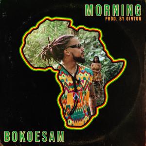 Album Morning from Bokoesam