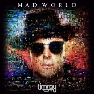 Listen to Mad World song with lyrics from Timmy Trumpet