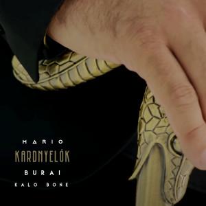 Mario(歐美)的專輯Kardnyelők (Explicit)