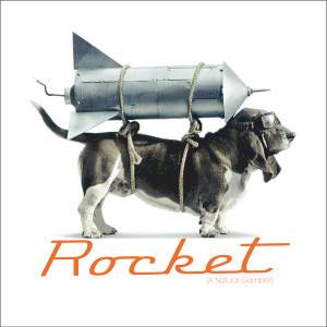 Rocket (A Natural Gambler) 2005 Braund Reynolds