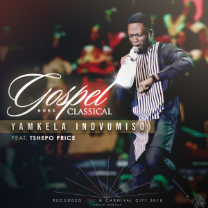 Album Yamkela Indvumiso from Tshepo Price
