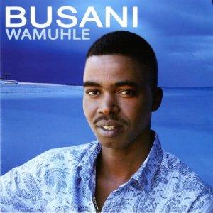 Album Wamuhle from Busani