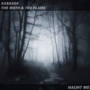 Album Haunt Me from The Moth & The Flame