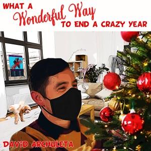 What a Wonderful Way to End a Crazy Year dari David Archuleta