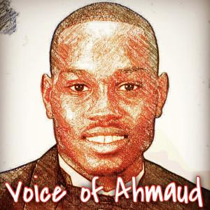Album Voice of Ahmaud from Black-D