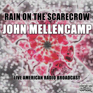 Album Rain On The Scarecrow from John Mellencamp
