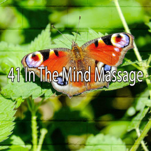 Album 41 In the Mind Massage from White Noise Meditation