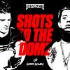 Download Lagu Destructo - Shots to the Dome