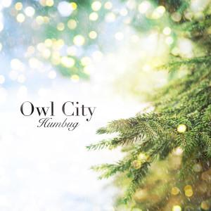Humbug dari Owl City