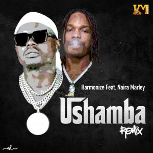 Album Ushamba from Harmonize