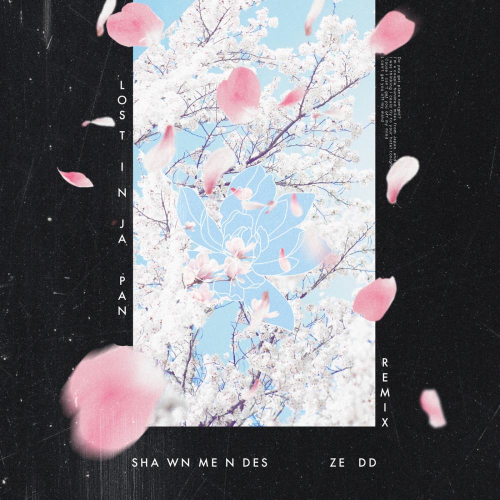 Lost In Japan 2018 Shawn Mendes; Zedd