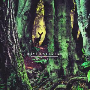 Manafon 2009 David Sylvian
