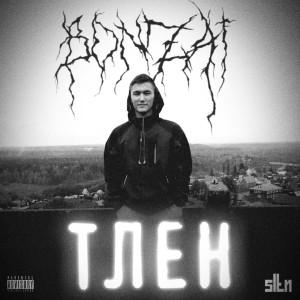 Album Тлен (Explicit) from Bonzai