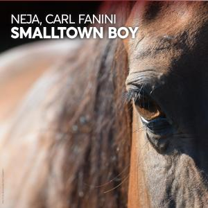 Album Smalltown Boy from Carl Fanini