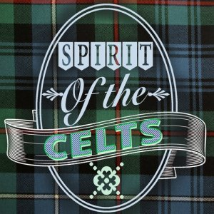 Listen to Celtic Faerie Jig song with lyrics from Lee FitzSimmons