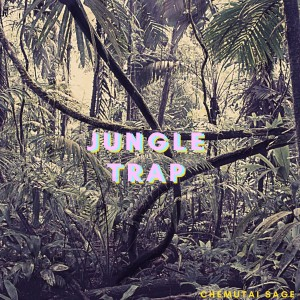Album Jungle Trap from Chemutai Sage