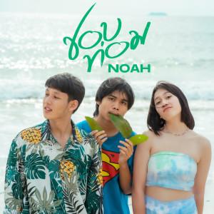 Album ชอบท่อม from NOAH