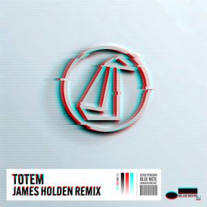 Album Totem from GoGo Penguin
