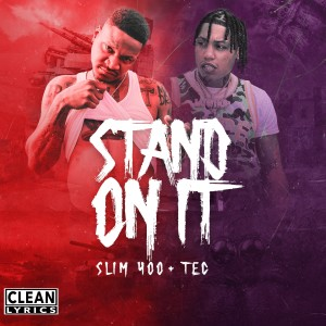 Album Stand On It from Slim 400