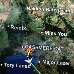 Album Miss You from Cashmere Cat