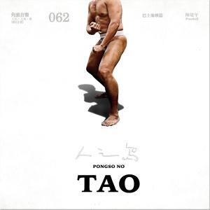 陳建年的專輯pongso no Tao