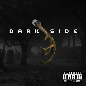 Album Dark Side from K Jizz