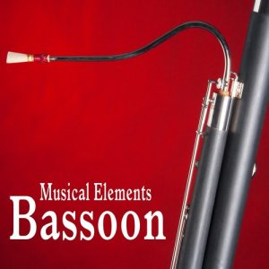 Sound Ideas的專輯Musical Elements – Bassoon Sound Effects
