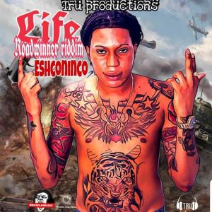 Album Life Roadwinner (Riddim) (Explicit) from Eshconinco