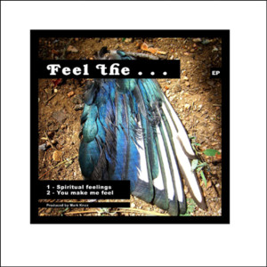 Album Feel The … EP from Mark Knox