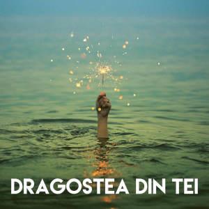 收聽CDM Project的Dragostea Din Tei歌詞歌曲