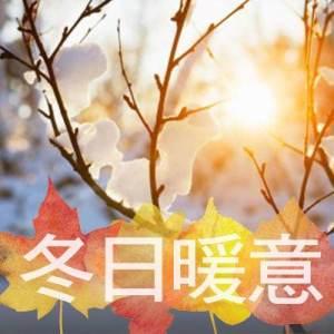 收聽泳兒的星語心願 (國)歌詞歌曲