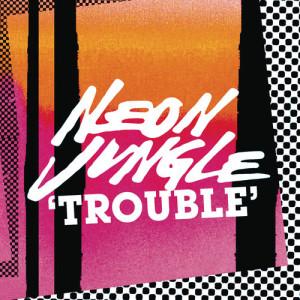 Neon Jungle的專輯Trouble Remixes